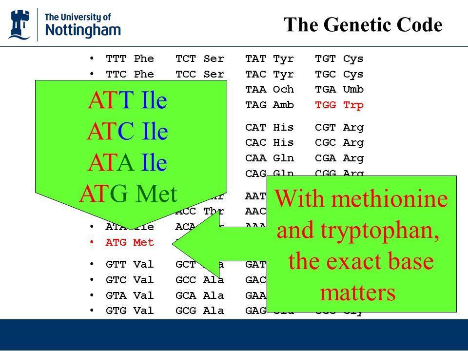 ATT Ile ATC Ile ATA Ile ATG Met With methionine and tryptophan,