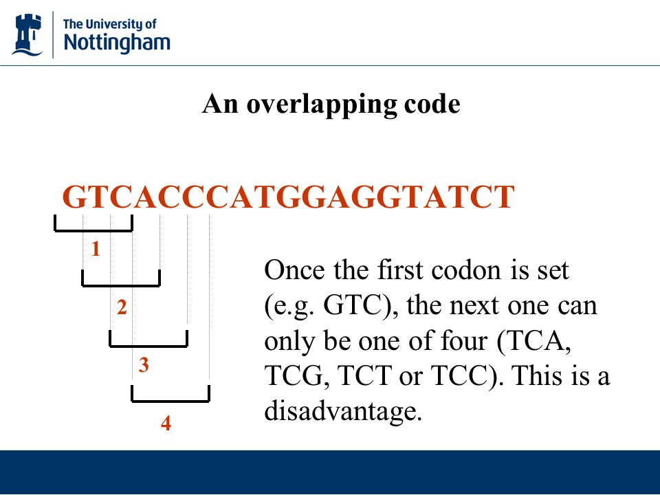 GTCACCCATGGAGGTATCT An overlapping code