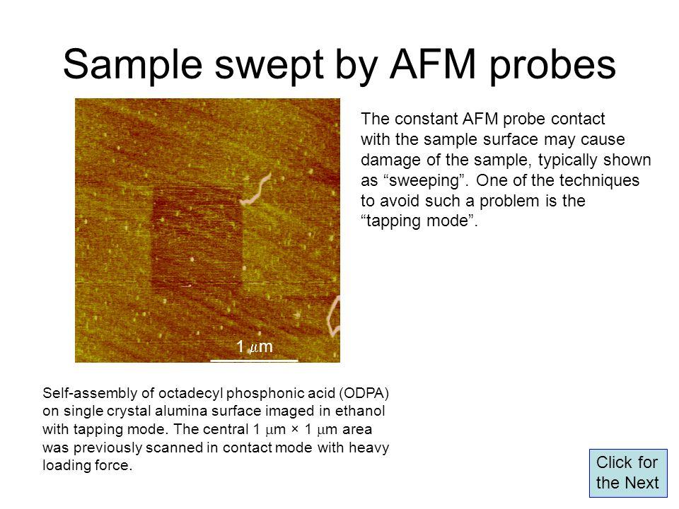 Sample swept by AFM probes