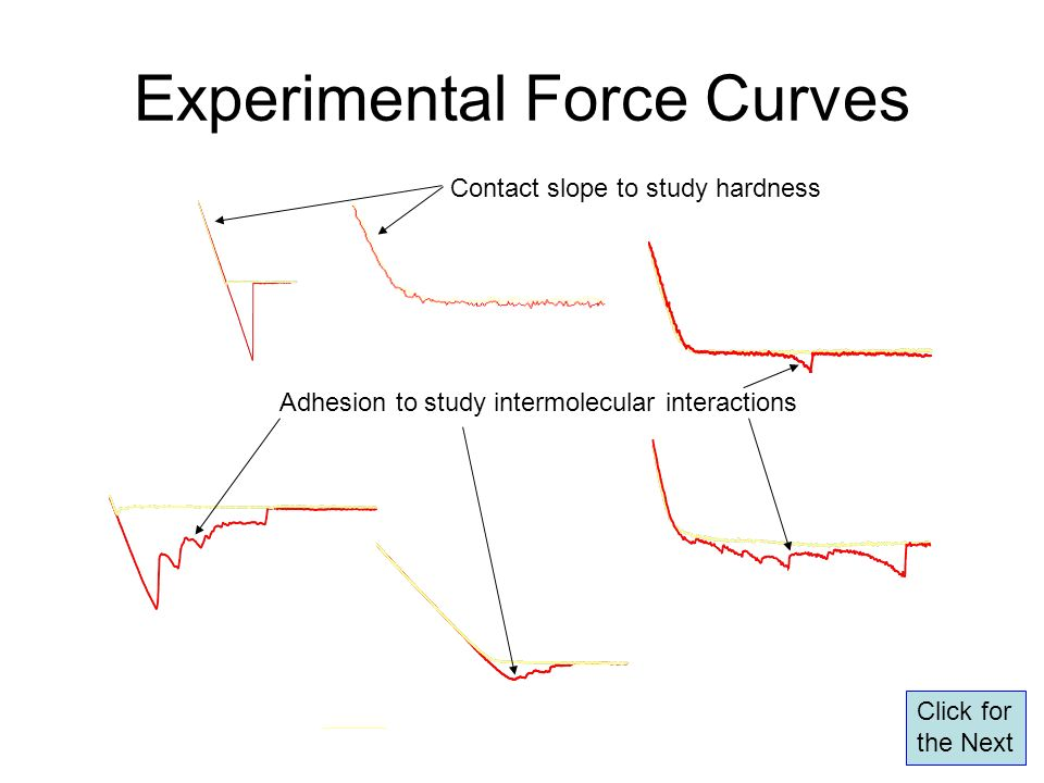 Experimental Force Curves
