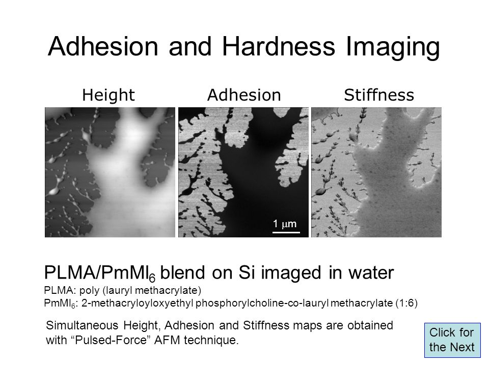 Adhesion and Hardness Imaging