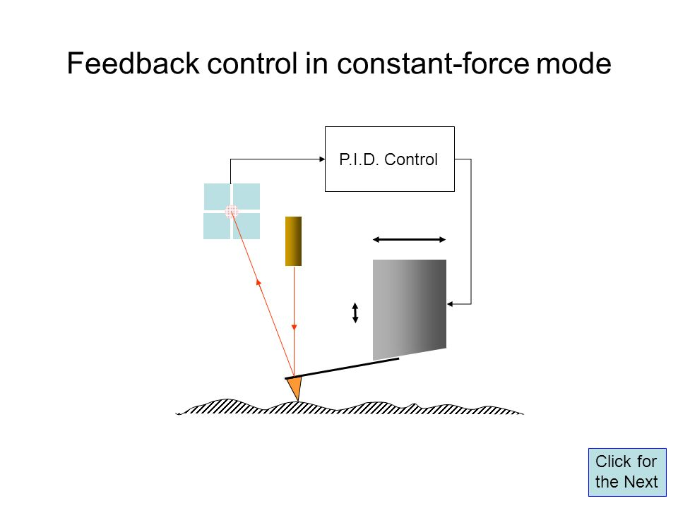 Feedback control in constant-force mode