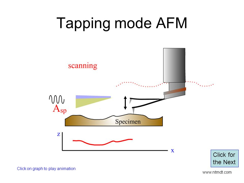 Tapping mode AFM Click for the Next Click on graph to play animation