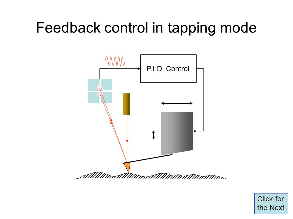 Feedback control in tapping mode