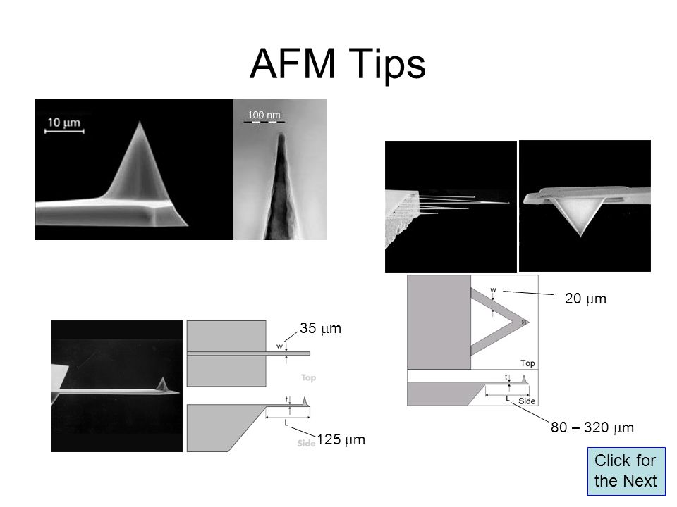 AFM Tips 80 – 320 mm 20 mm 35 mm 125 mm Click for the Next