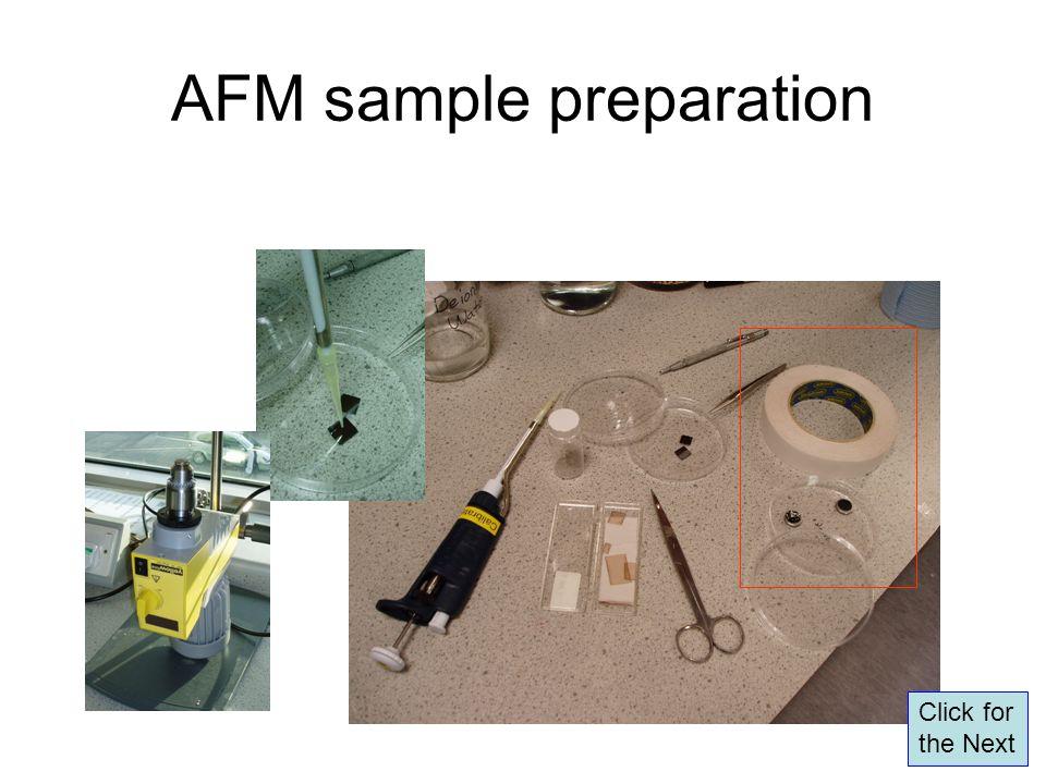 AFM sample preparation