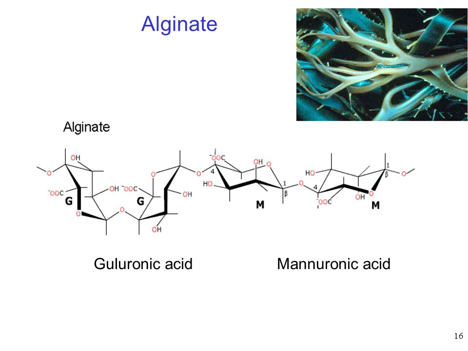 Alginate Guluronic acid Mannuronic acid