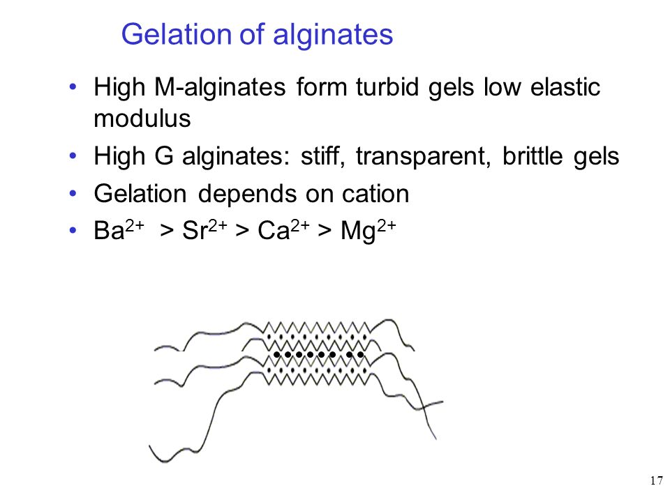 Gelation of alginates High M-alginates form turbid gels low elastic modulus. High G alginates: stiff, transparent, brittle gels.
