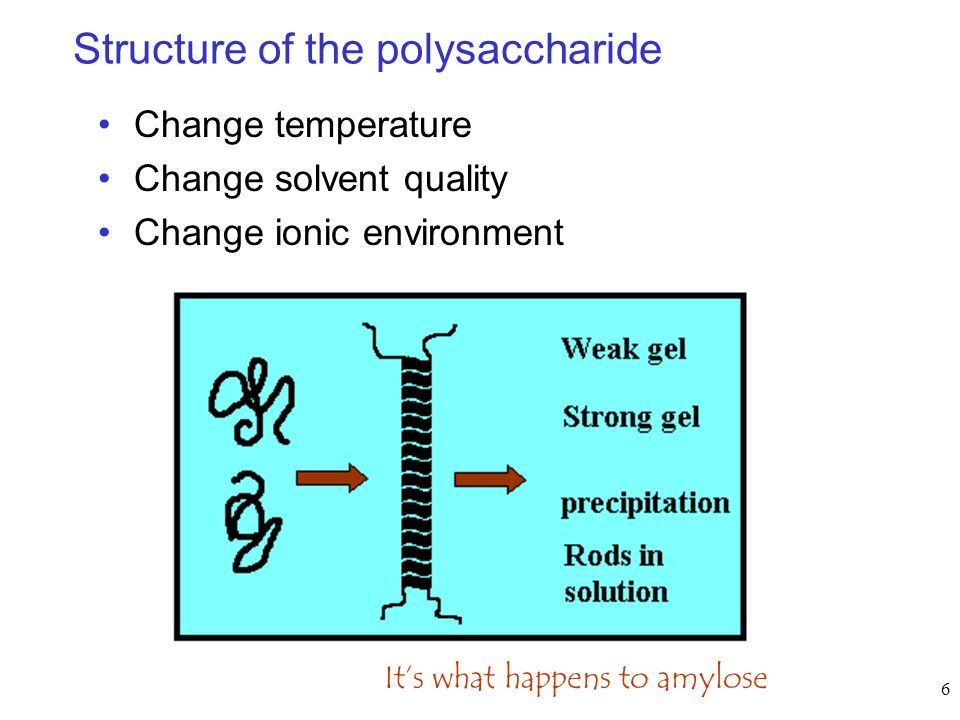Structure of the polysaccharide