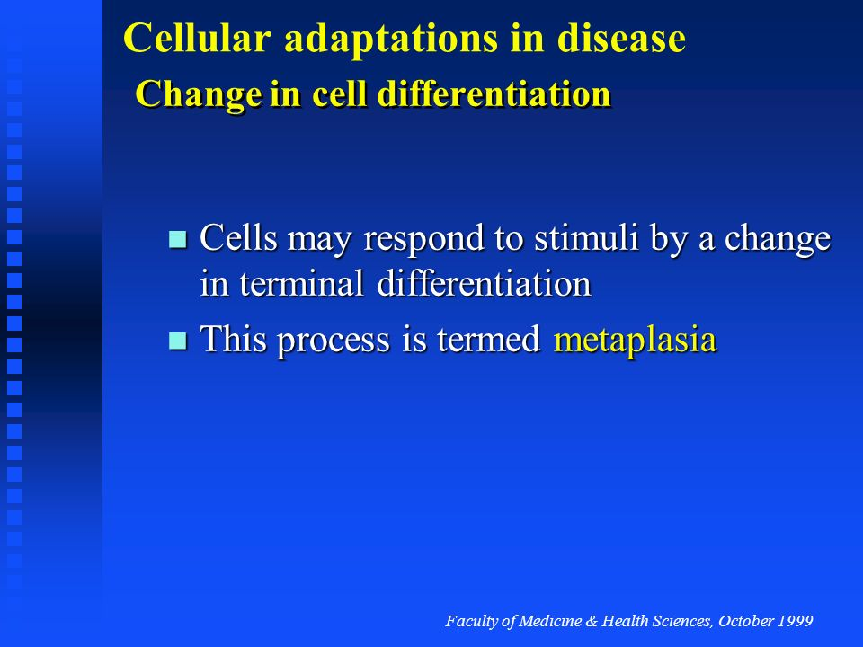 Change in cell differentiation