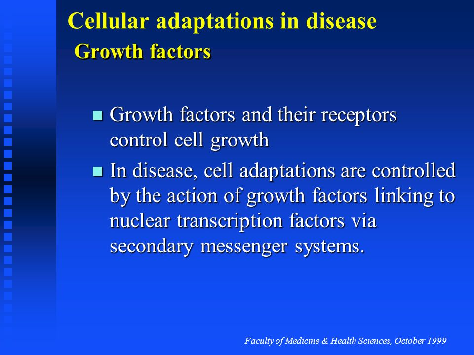 Growth factors Growth factors and their receptors control cell growth.