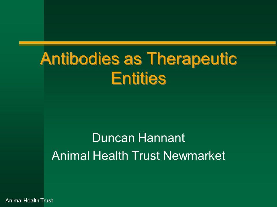 Antibodies as Therapeutic Entities