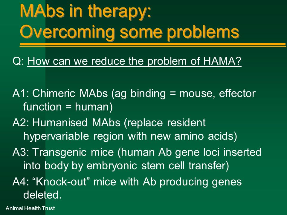 MAbs in therapy: Overcoming some problems