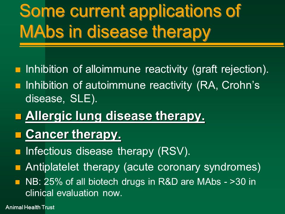 Some current applications of MAbs in disease therapy