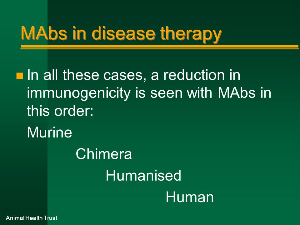 MAbs in disease therapy