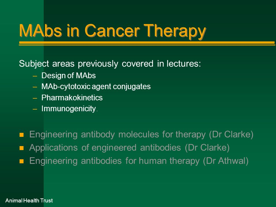 MAbs in Cancer Therapy Subject areas previously covered in lectures: