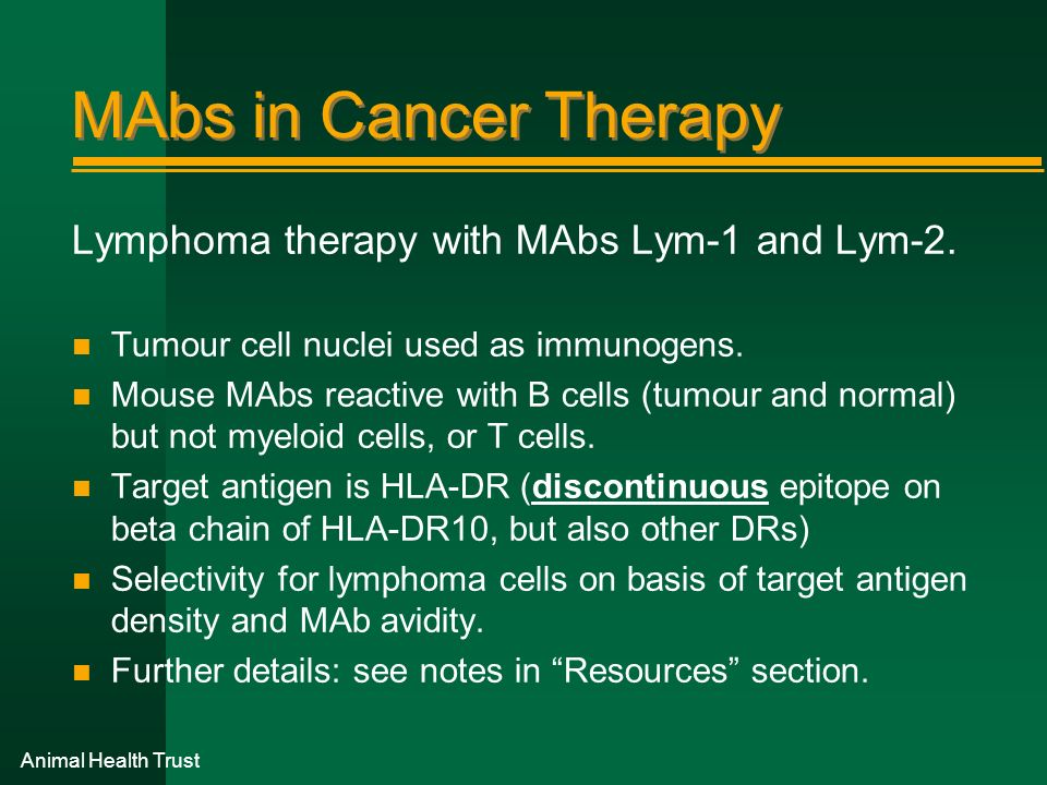 MAbs in Cancer Therapy Lymphoma therapy with MAbs Lym-1 and Lym-2.