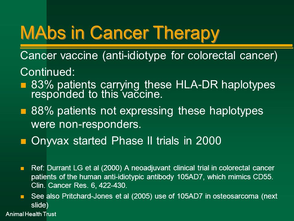 MAbs in Cancer Therapy Cancer vaccine (anti-idiotype for colorectal cancer) Continued: