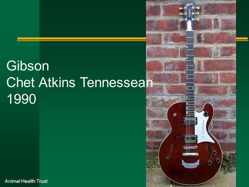 Gibson Chet Atkins Tennessean 1990