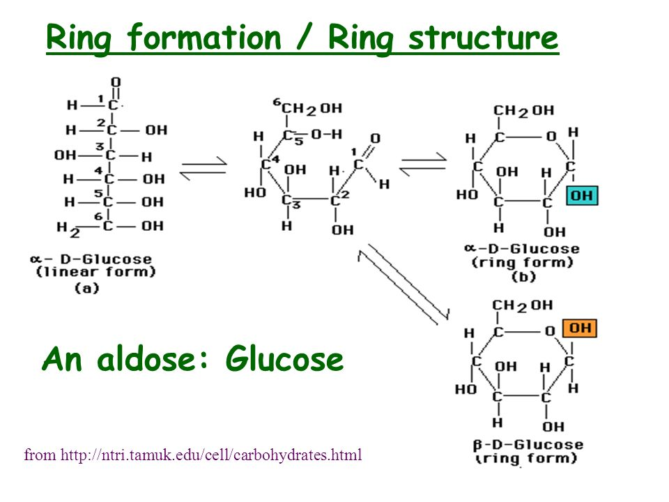 Ring formation / Ring structure