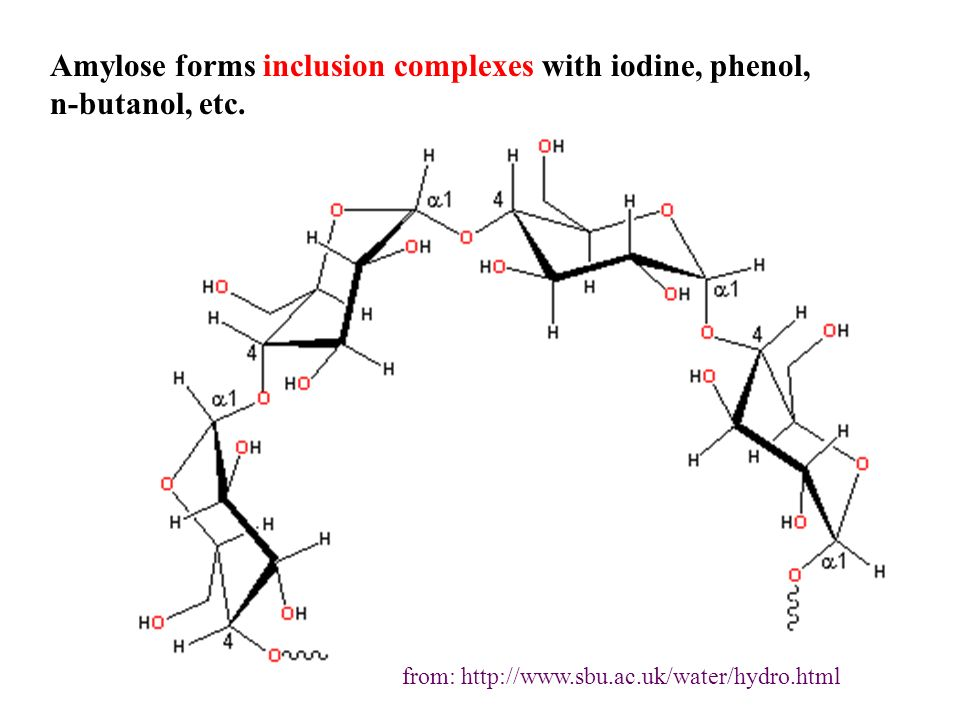 Amylose forms inclusion complexes with iodine, phenol, n-butanol, etc.