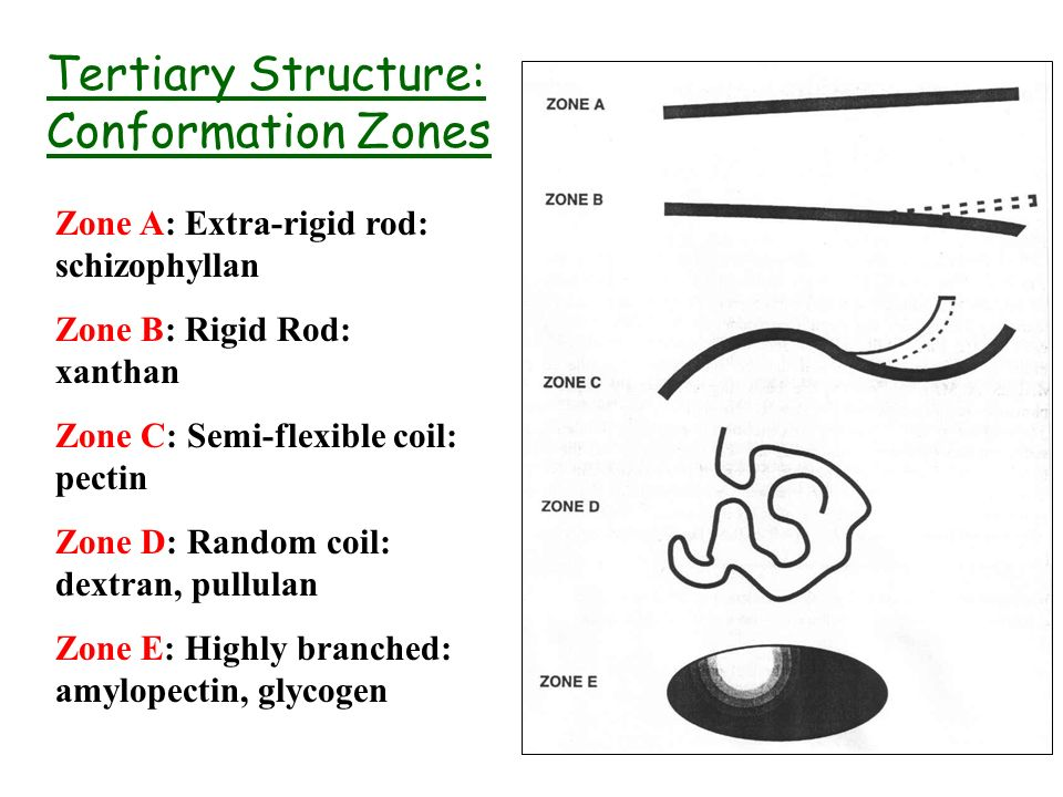 Tertiary Structure: Conformation Zones