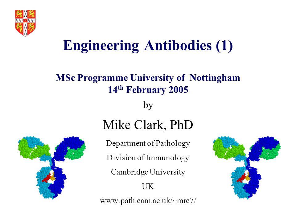 Engineering Antibodies (1) MSc Programme University of Nottingham 14th February 2005