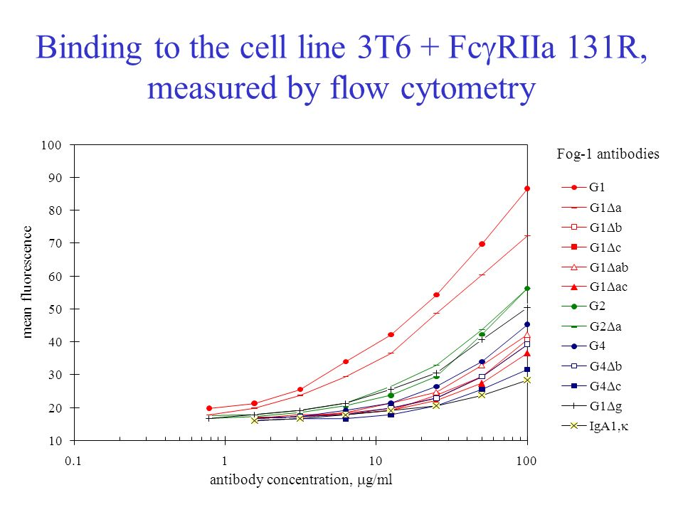Binding to the cell line 3T6 + FcgRIIa 131R, measured by flow cytometry