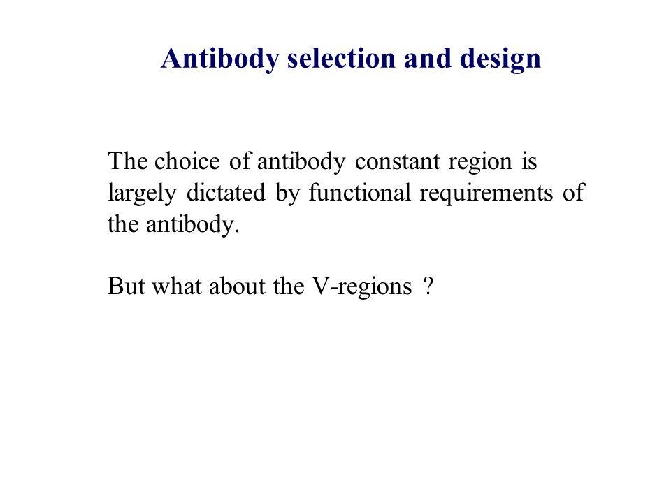 Antibody selection and design