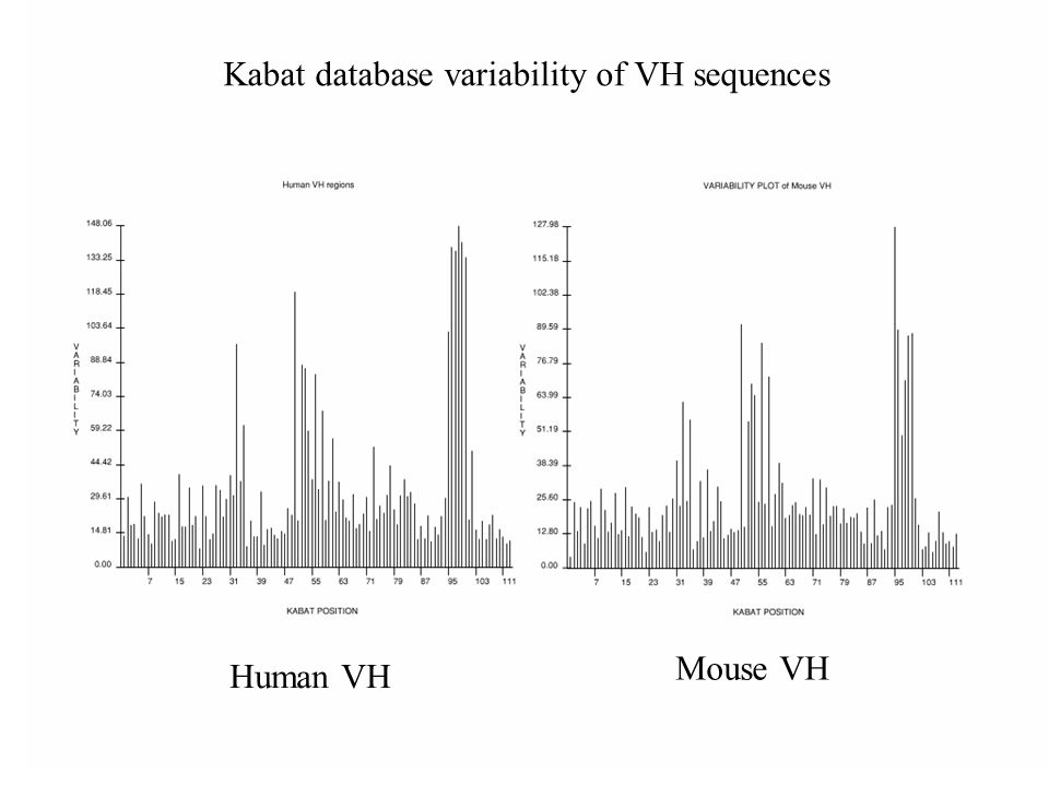 Kabat database variability of VH sequences