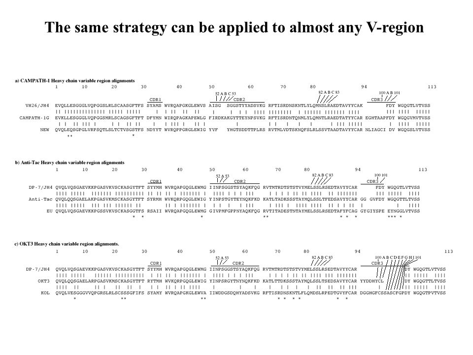 The same strategy can be applied to almost any V-region