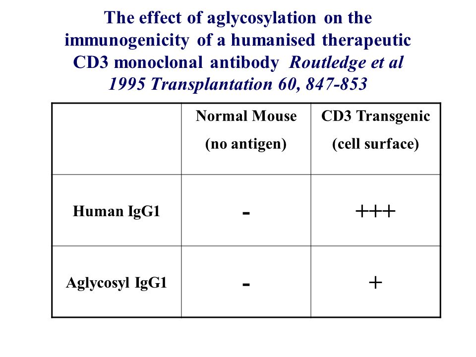 The effect of aglycosylation on the immunogenicity of a humanised therapeutic CD3 monoclonal antibody Routledge et al 1995 Transplantation 60, 847-853