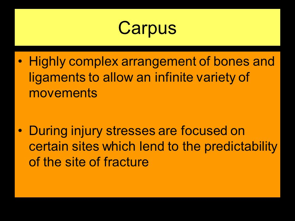 Carpus Highly complex arrangement of bones and ligaments to allow an infinite variety of movements.