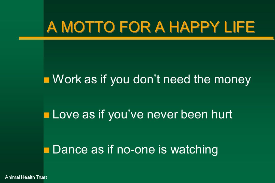 A MOTTO FOR A HAPPY LIFE Work as if you don't need the money