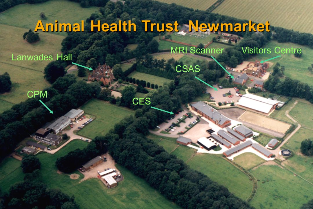 Animal Health Trust Newmarket