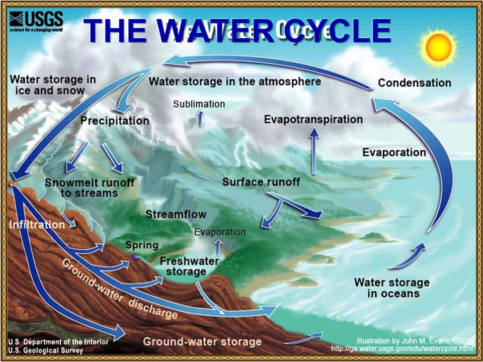 Water cycle[1] power point.