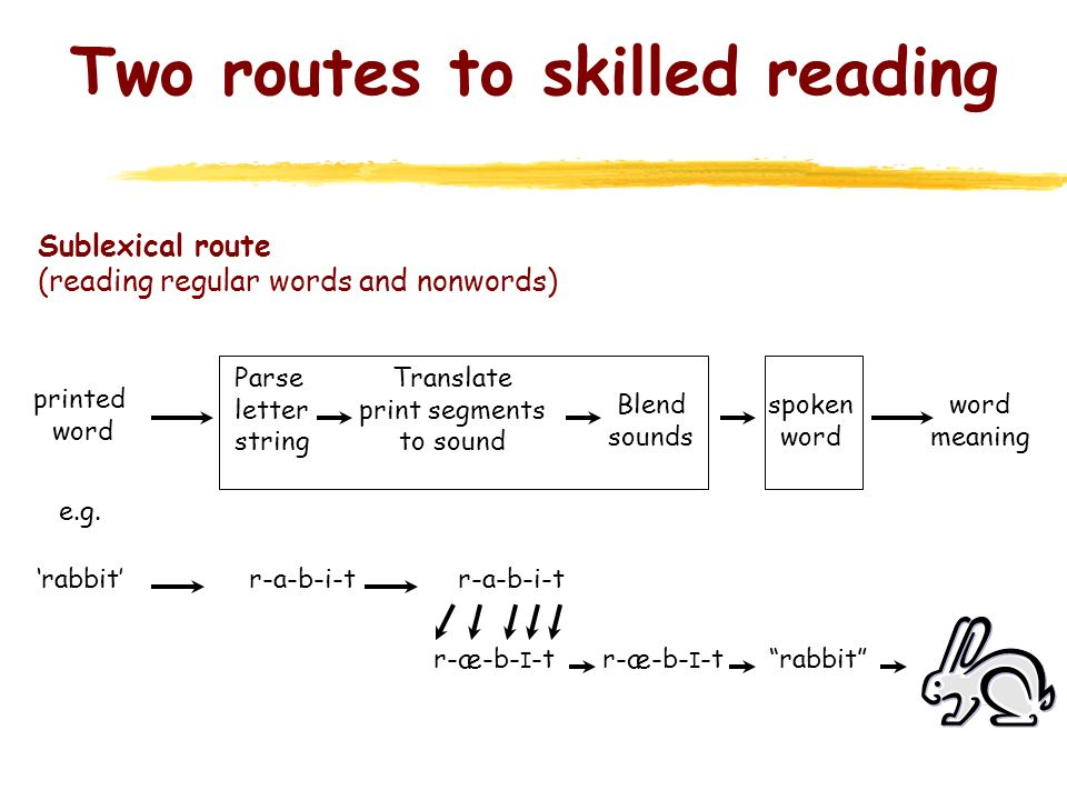 Two routes to skilled reading