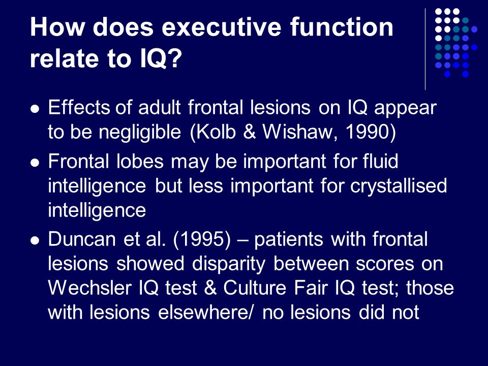 How does executive function relate to IQ