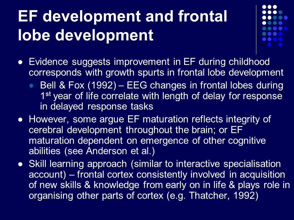 EF development and frontal lobe development