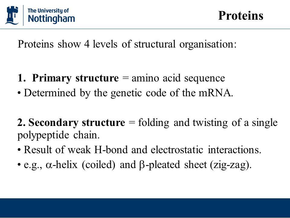 Proteins Proteins show 4 levels of structural organisation: