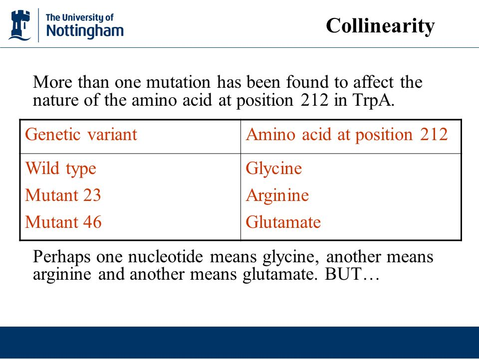 Collinearity More than one mutation has been found to affect the nature of the amino acid at position 212 in TrpA.