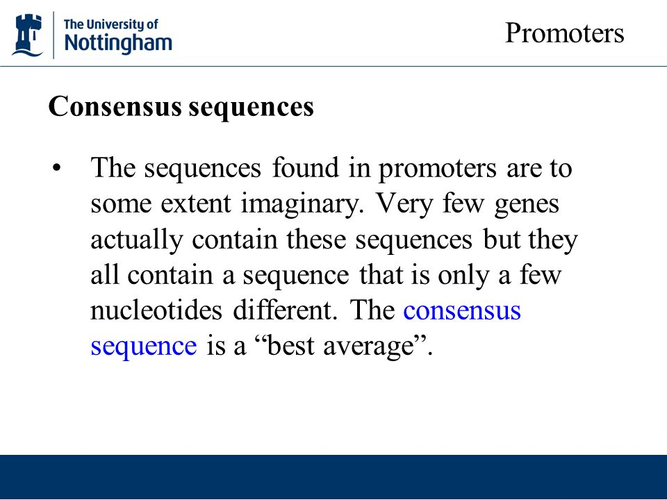 Promoters Consensus sequences.