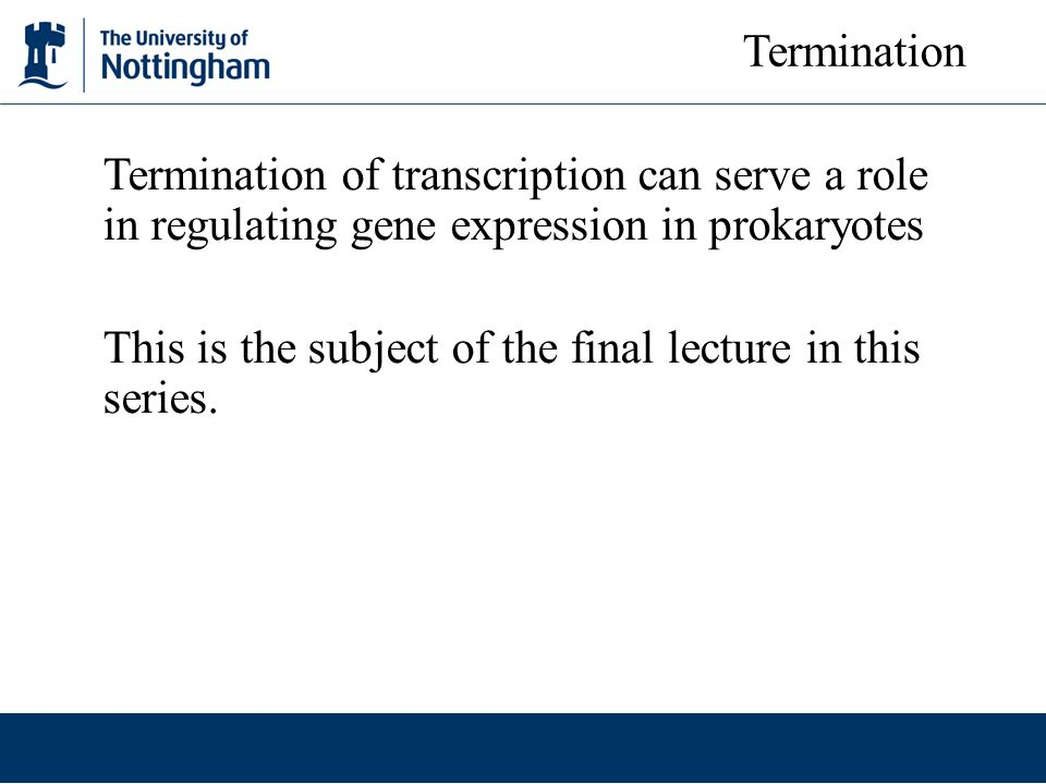 Termination Termination of transcription can serve a role in regulating gene expression in prokaryotes.