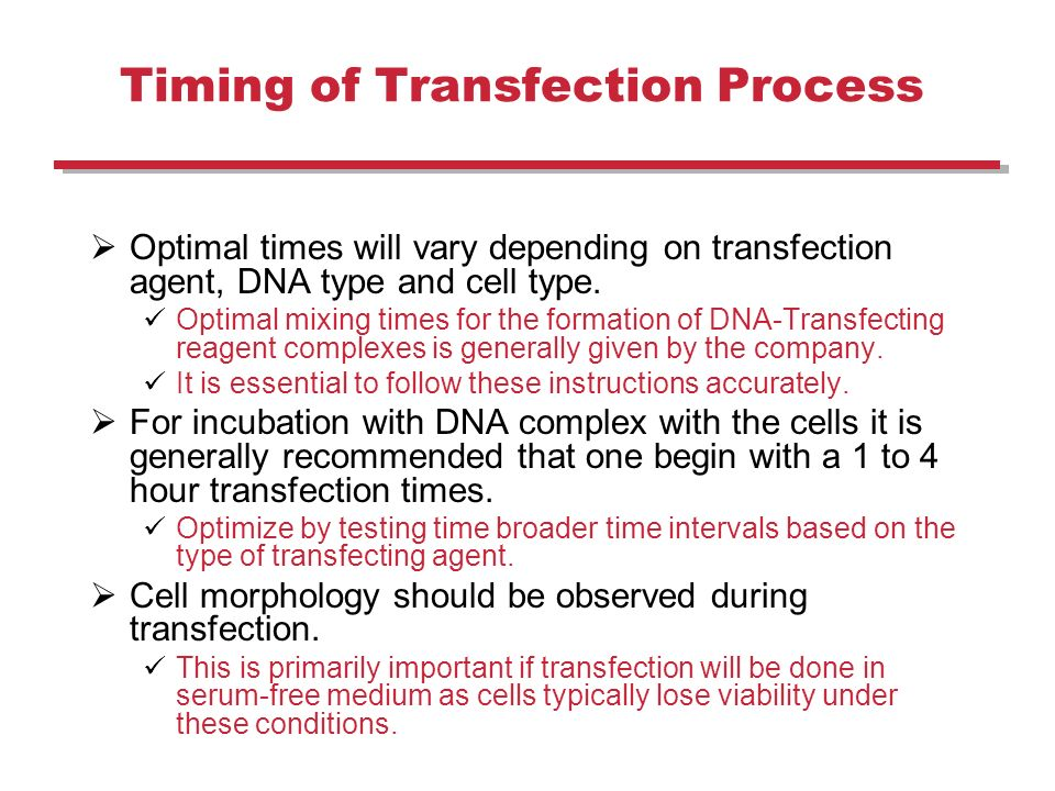 optimal conditions for a transfection essay Every mammalian cell type has a characteristic set of requirements for optimal introduction of foreign dna there is a tremendous degree of variability in the transfection conditions that work, even among cell types that are very similar to one another.