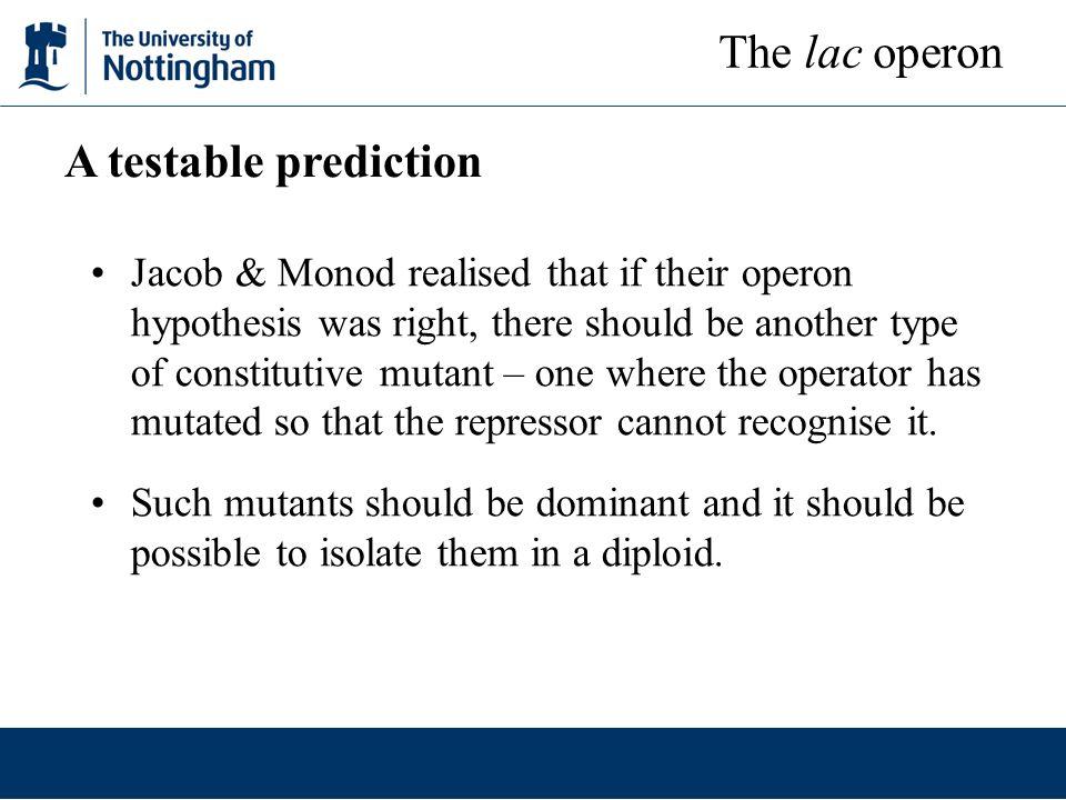 The lac operon A testable prediction