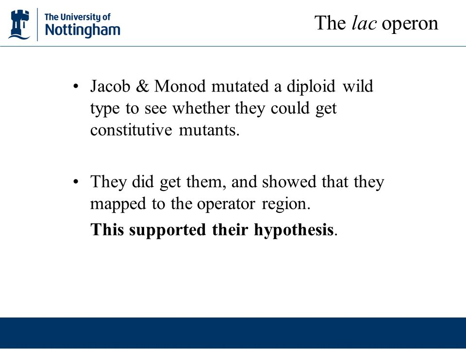 The lac operon Jacob & Monod mutated a diploid wild type to see whether they could get constitutive mutants.