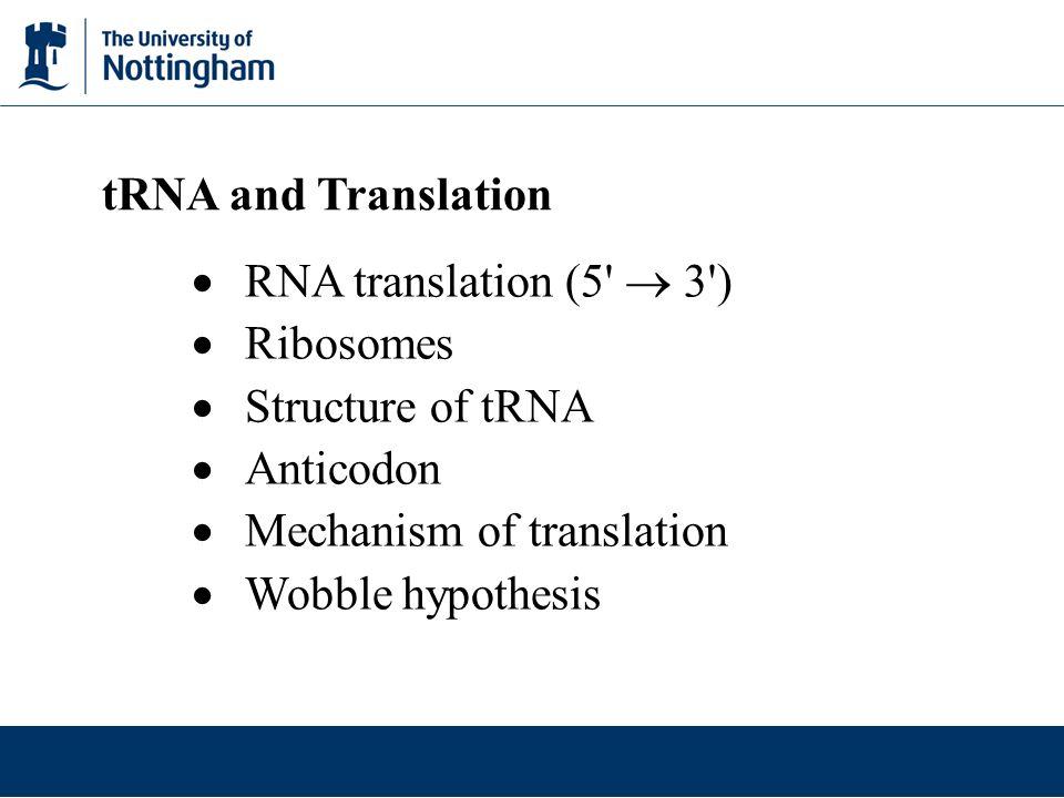 tRNA and Translation RNA translation (5  3 ) Ribosomes. Structure of tRNA. Anticodon. Mechanism of translation.