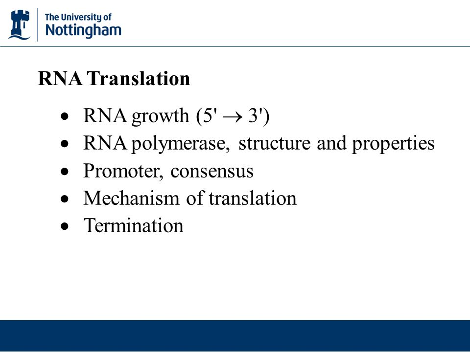 RNA Translation  RNA growth (5  3 ) RNA polymerase, structure and properties. Promoter, consensus.