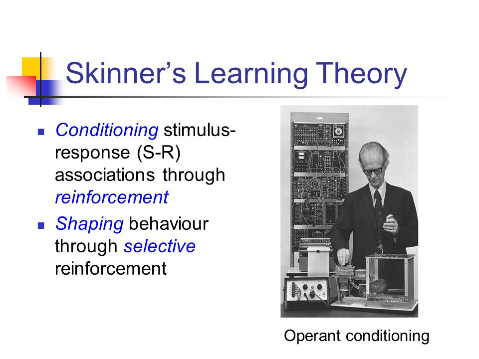 Skinner's Learning Theory