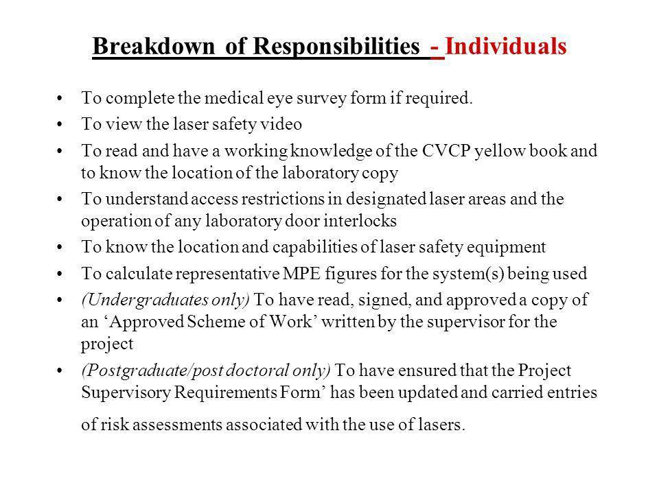 Breakdown of Responsibilities - Individuals